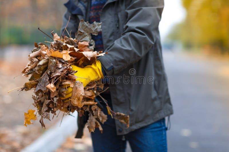 Närbilden av en hand för man` s i gula handskar tar bort sidor royaltyfria foton
