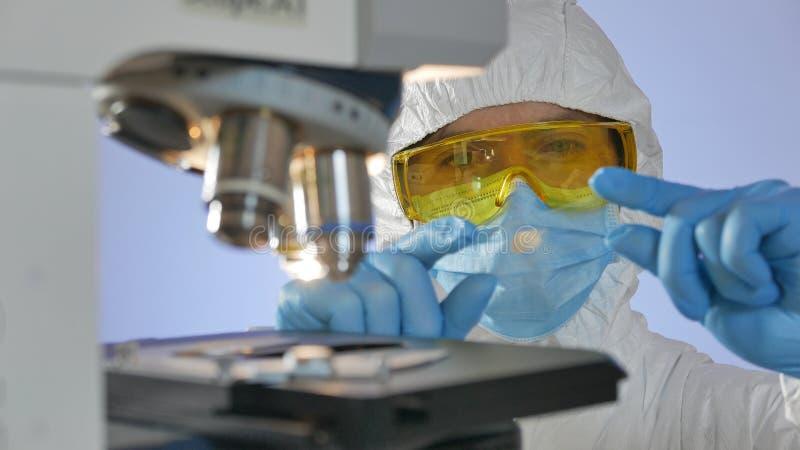 Närbilden sköt av en forskare som ser en exponeringsglasglidbana med bakterier som undersöker med mikroskopet arkivbild