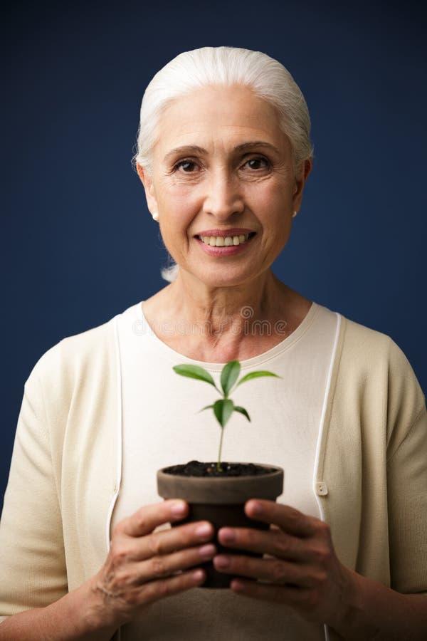 Närbildfoto av den glade åldriga kvinnan som rymmer den gröna växten i spoen royaltyfria bilder