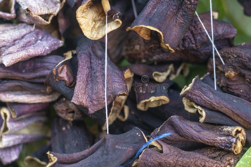 Närbildframdelfors för torkad aubergine med traditionell hängande metod i Turkiet arkivbilder