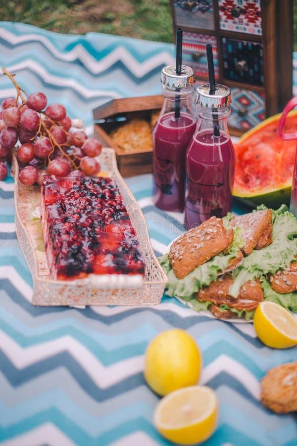 Närbildpicknick i natur Smörgåsar, kaka, termos, drinkar och druvor royaltyfri foto