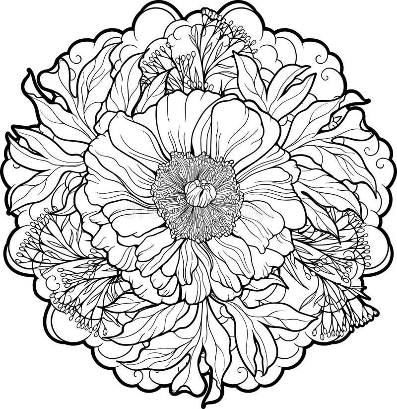 Närbildsikt av pionblomman royaltyfri illustrationer