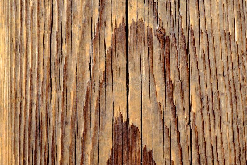Närbildsikt av träbakgrund i tappningstil royaltyfri foto