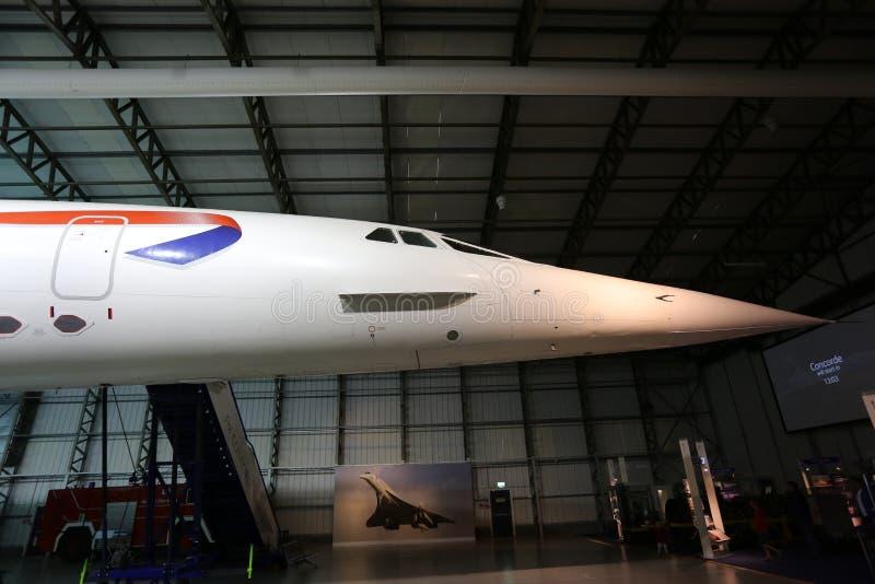 Näsa av Concorden arkivbild