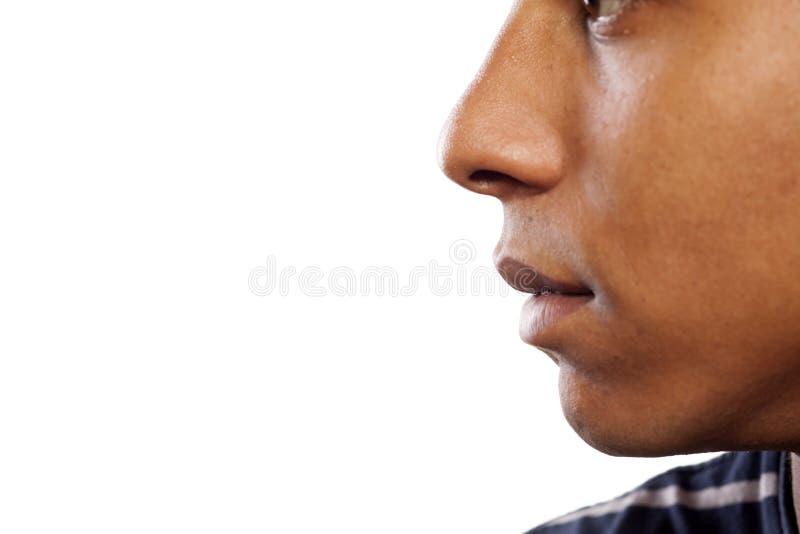 näsa och mun royaltyfri bild