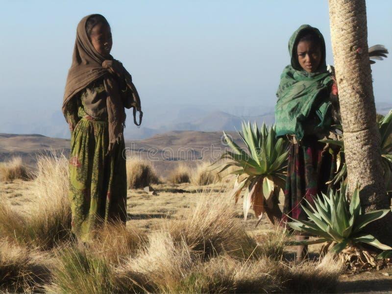 Nästa vårt läger för barn i bergen Siemens, Etiopien royaltyfri foto