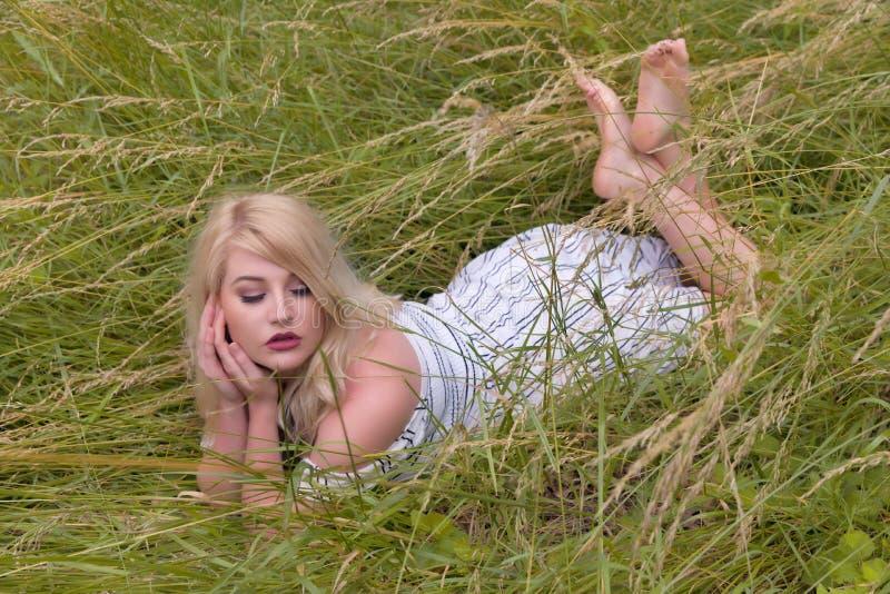 N?tt blond kvinna som ligger i ?ng royaltyfria bilder