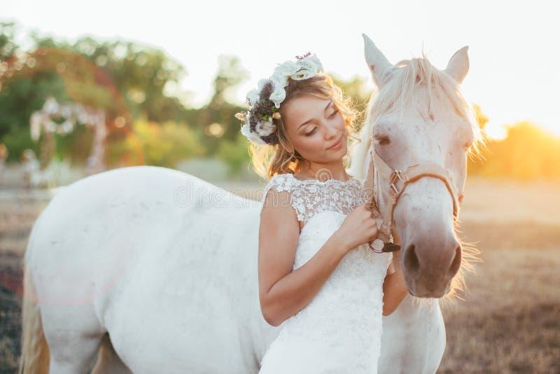 Nätt brud med hästen royaltyfria bilder