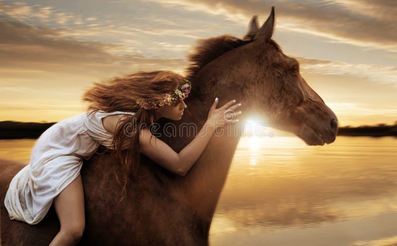 Nätt dam som rider en häst vid galopp fotografering för bildbyråer