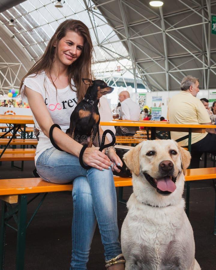 Nätt flicka som poserar med hennes hundkapplöpning på Quattrozampeinfiera i Milan, Italien arkivbilder