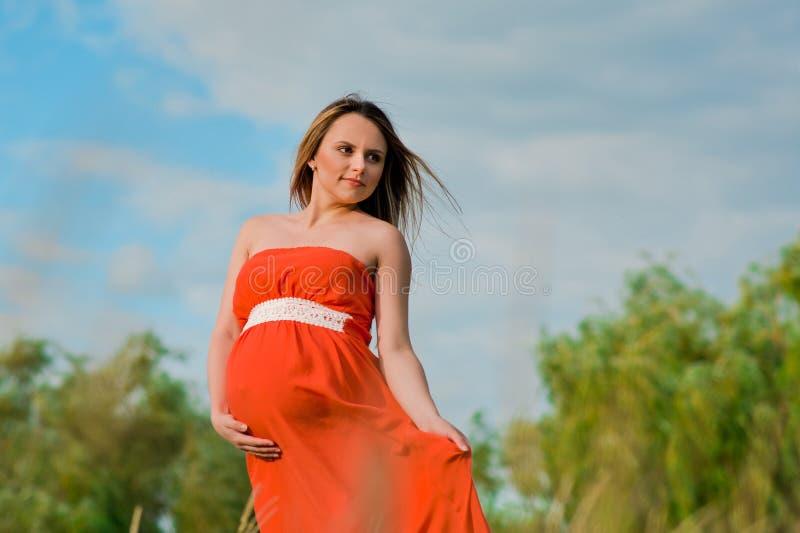 Nätt gravid kvinna på naturen arkivfoton