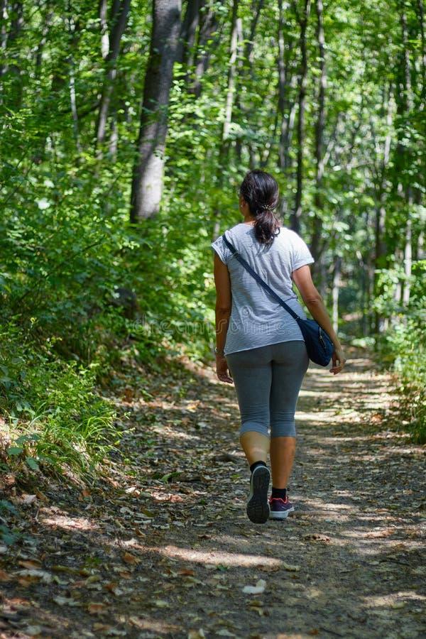 Nätt kvinna som går i bokträdskogen på vår royaltyfria bilder