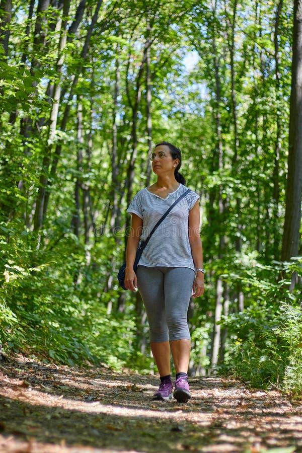 Nätt kvinna som går i bokträdskogen på vår arkivfoton