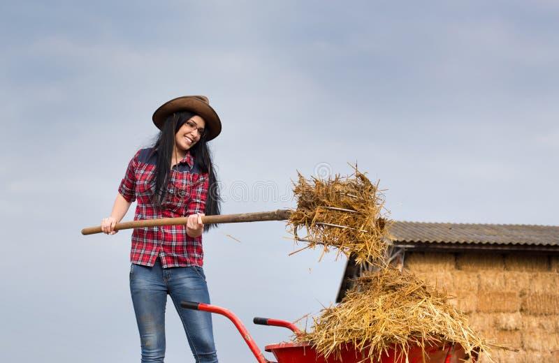 Nätt landskvinna som arbetar med djur gödsel fotografering för bildbyråer