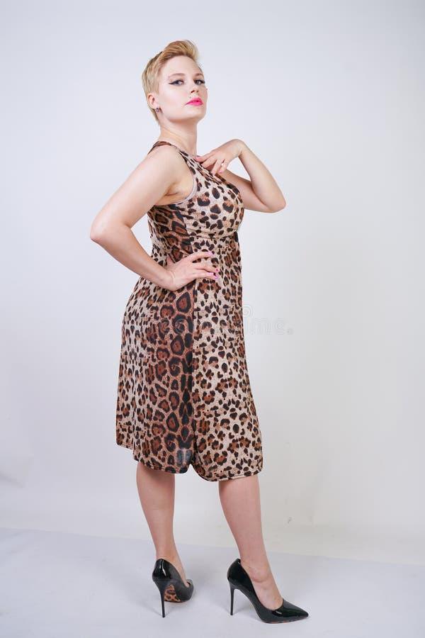 Nätt plus ung kvinna för format med kort blont hår som bär den mellersta längdsommarklänningen med det djura leopardtrycket gulli royaltyfri fotografi