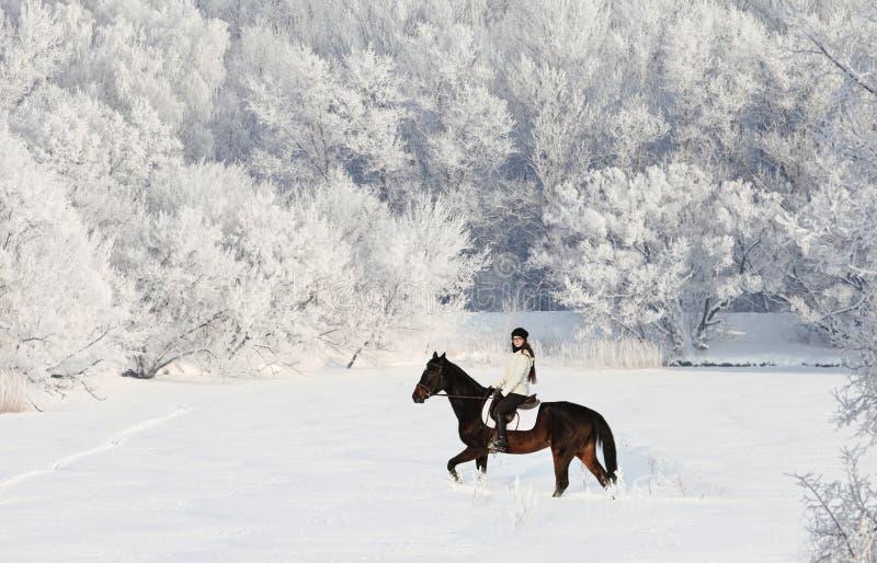Nätt rid- flicka som utomhus rider hennes svarta häst till och med snö royaltyfria bilder