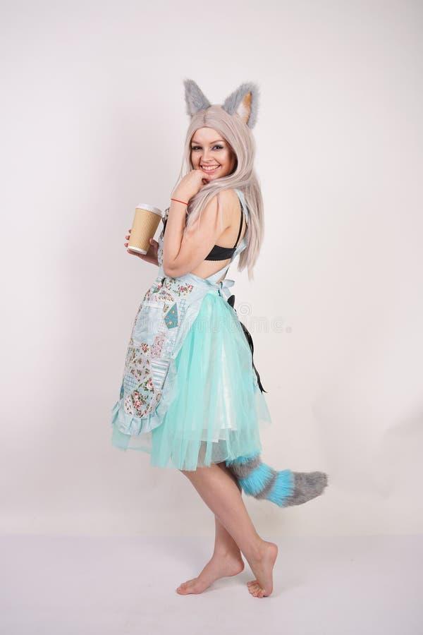 Nätt skämtsam ung flicka med kattöron och förklädet för kök för lång fluffig pälssvans det bärande på isolerad vit bakgrund royaltyfri bild