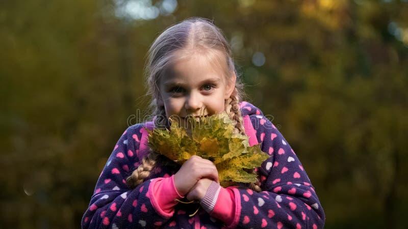 Nätt skolflicka som rymmer gula sidor som tycker om höstväder, lycka fotografering för bildbyråer