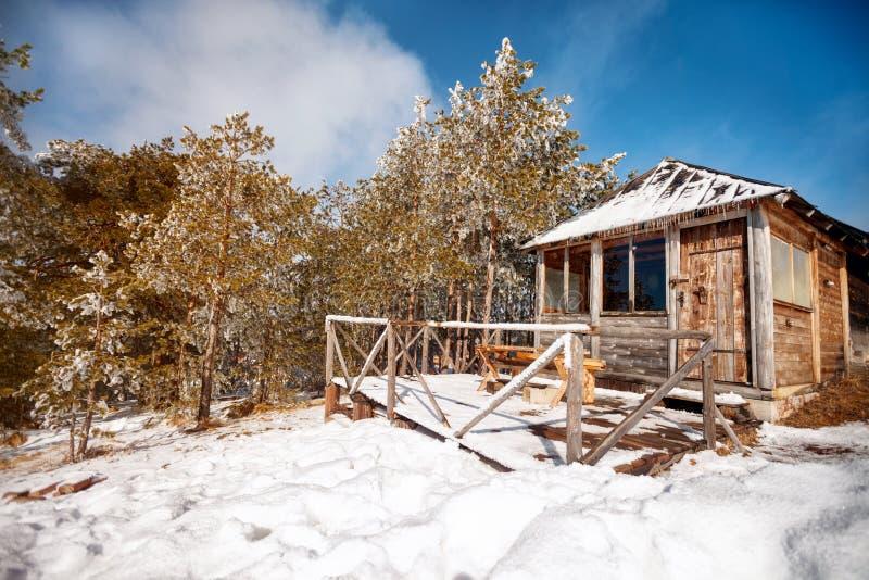 Nätt snö-täckt wood kabin i vinter royaltyfri fotografi