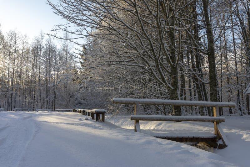 Nätt snö täckte bron över en ström i vinter royaltyfri bild