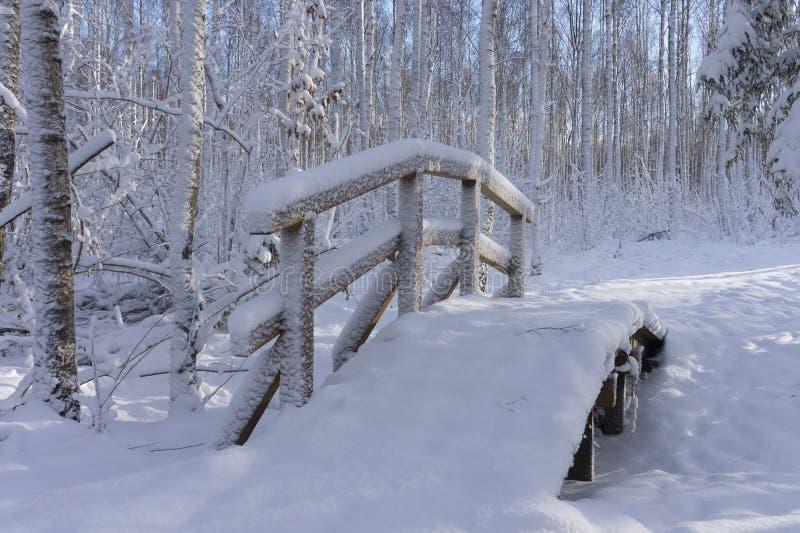 Nätt snö täckte den välvda bron över en ström royaltyfri bild