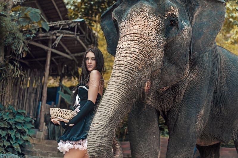 Nätt ung dam med en elefant royaltyfria bilder