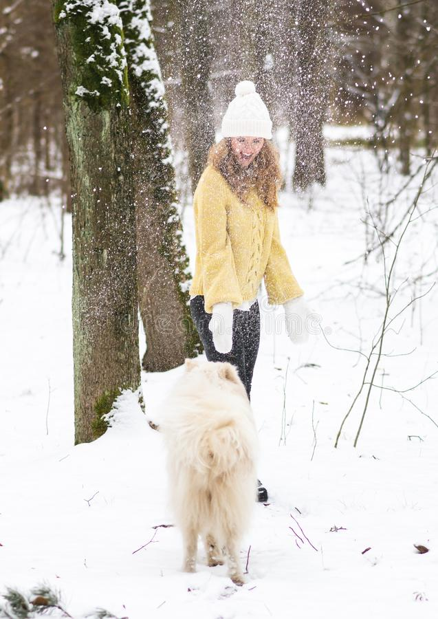 Nätt ung kvinna i den snöig vintern Forest Park Walking Playing med hennes vita Samoyed för hund royaltyfri fotografi