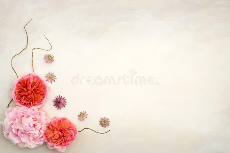 Nätt utformat blom- skrivbords- modellfotografi royaltyfria foton