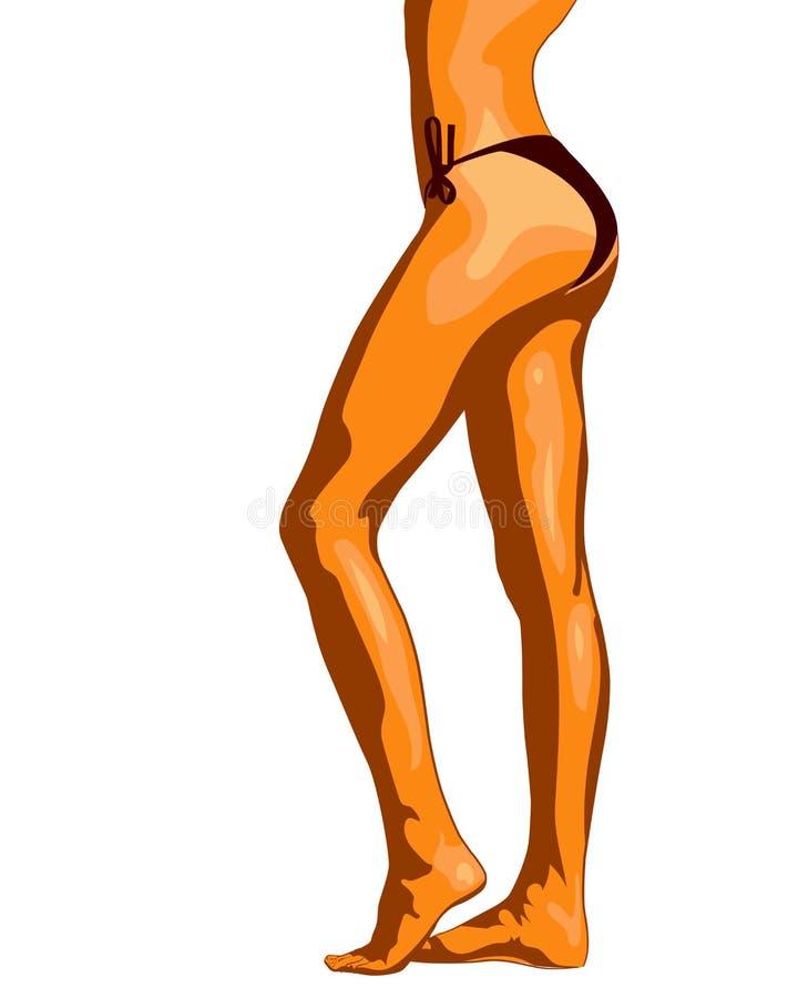 Nätt woman& x27; bild för s-benvektor vektor illustrationer