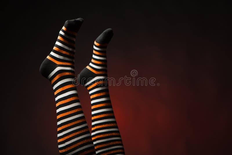 Nätta ben i länge mång--färgade sockor royaltyfria bilder