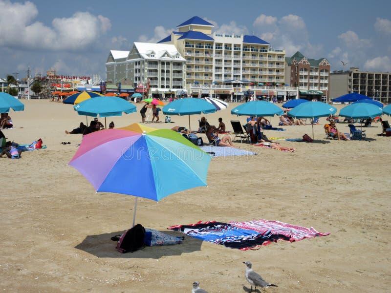 Nätta paraplyer på stranden fotografering för bildbyråer
