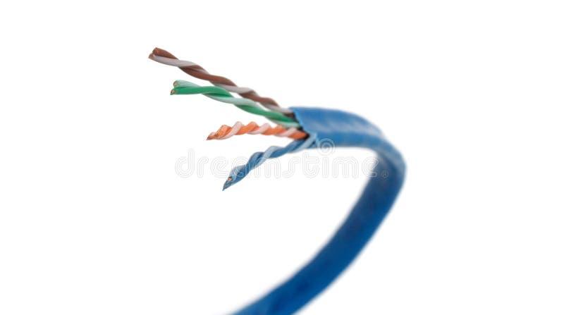 nätverk för kategori för 6 kabel krökt royaltyfria bilder