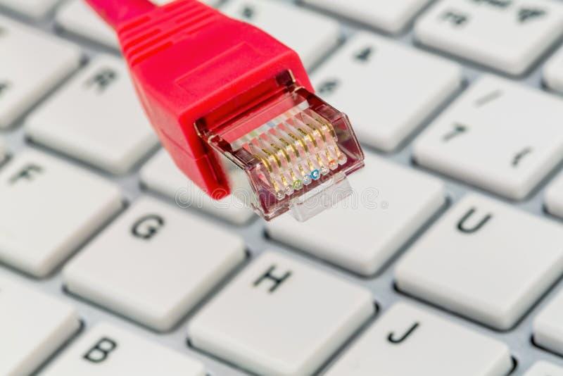 Nätverkskabel till tangentbordet arkivbild