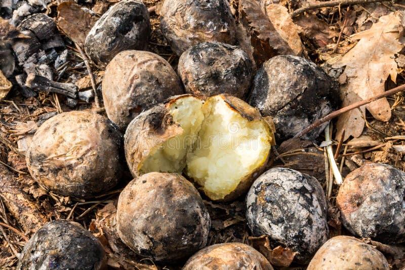 Näve bakade potatisar Potatisar med brand royaltyfri fotografi