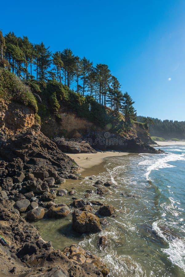 Någon scenisk sikt av stranden i Sc för tillstånd för Heceta huvudfyr royaltyfri bild