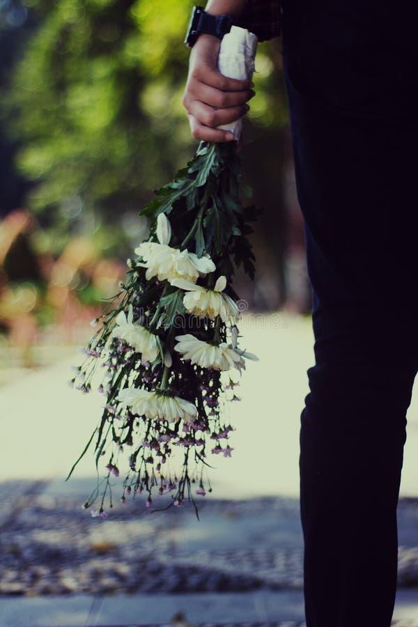 Någon som rymmer en bukett av blomman för vit tusensköna för en överraskning arkivfoto
