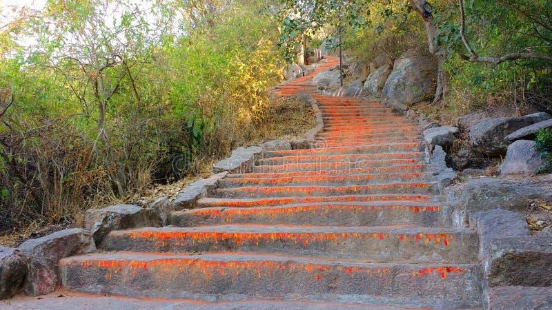 Några av de 1000 momenten till den Chamundi kullen, Mysore, Indien royaltyfria bilder