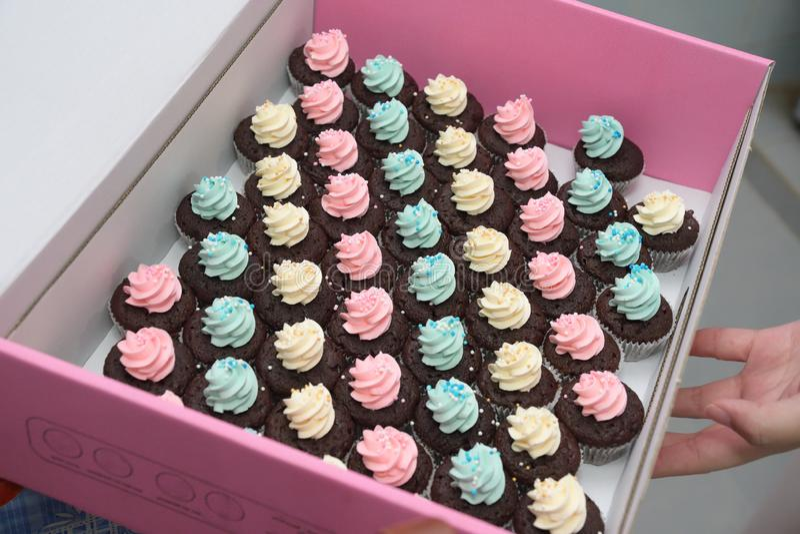 N?gra f?rgglade kr?m- sm? bakelsemuffin i en rosa ask fotografering för bildbyråer