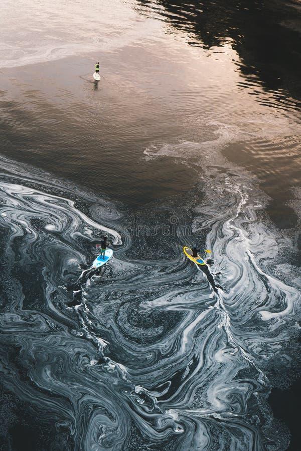 Några skovelboarders tycker om det förorenade vattnet av den Willamette floden nedanför nedgångarna royaltyfria bilder