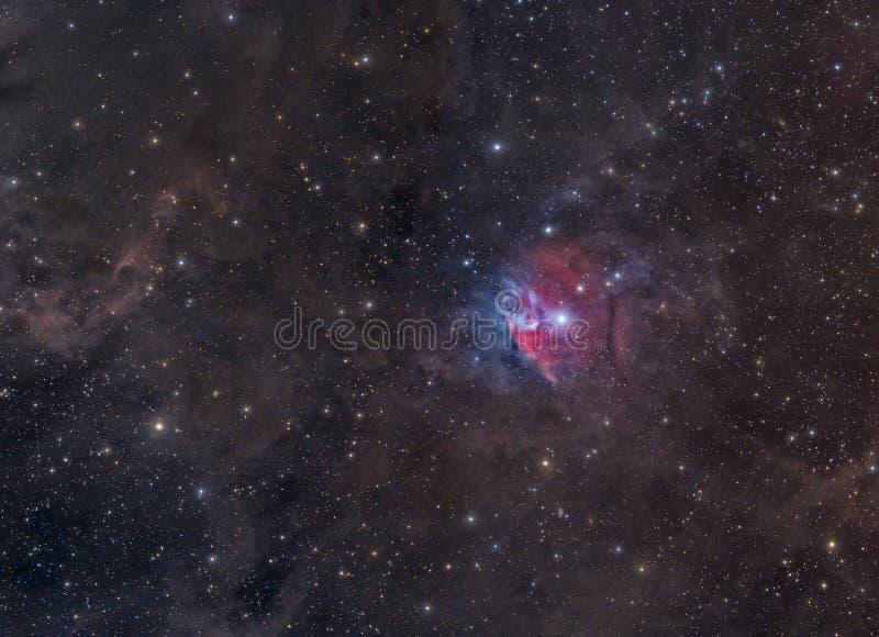 Nébuleuse colorée en Orion images libres de droits