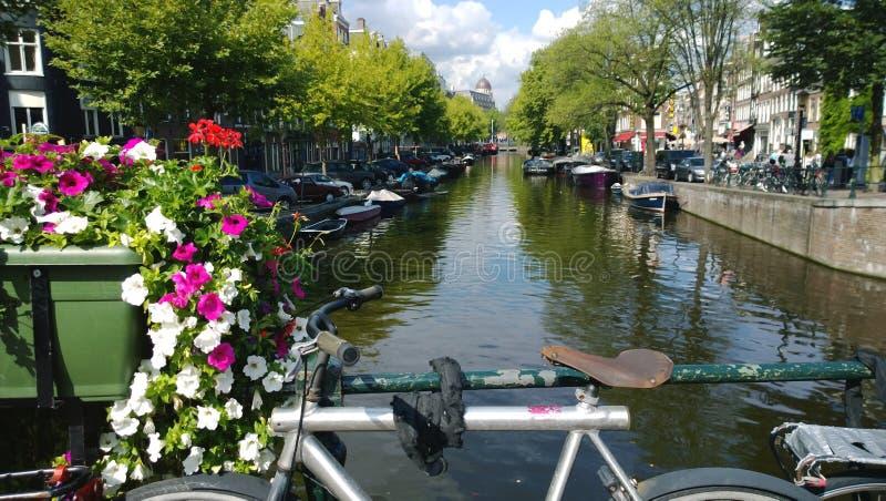 Négligence d'un des canaux d'Amsterdam aux Pays-Bas Le siège et les guidons du vélo dans le cadre photographie stock libre de droits