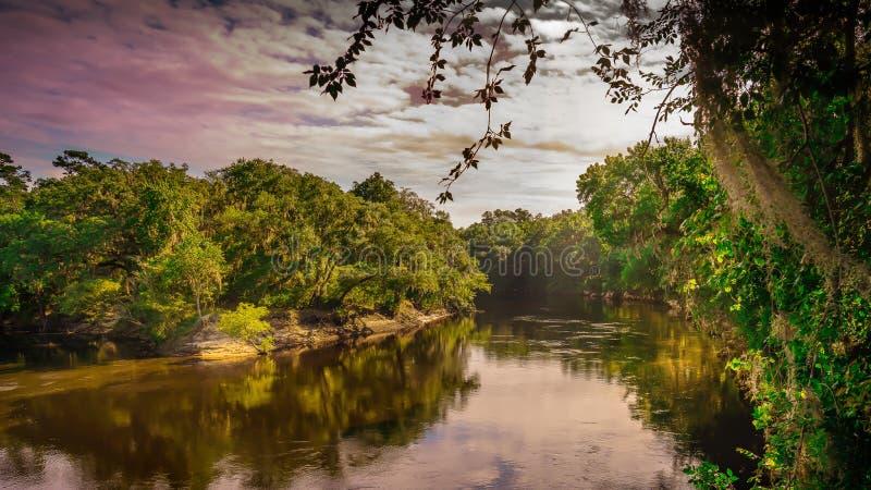 Névoa à terra do amanhecer histórico do rio de Suwannee imagem de stock