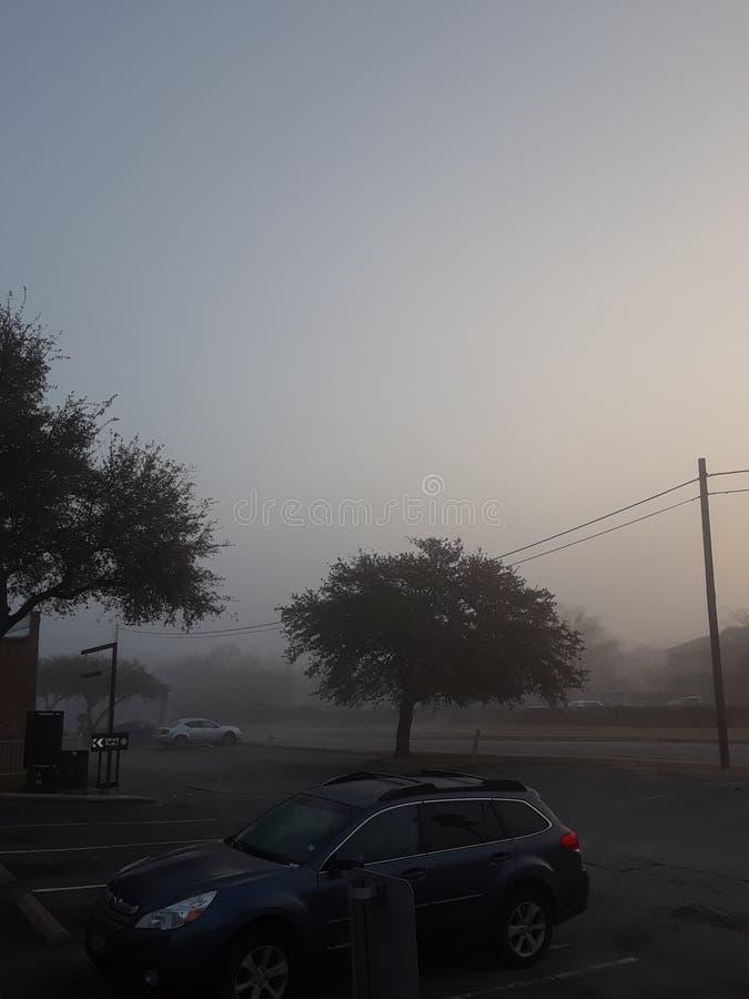 A névoa! fotos de stock