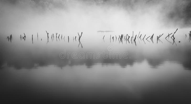 névoa fotografia de stock