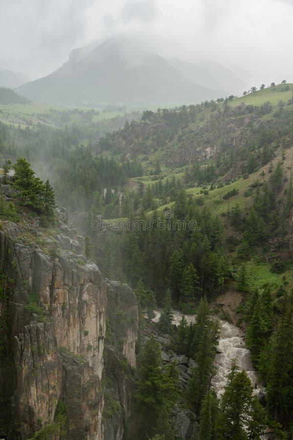 A névoa atrasa-se sobre o rio em Wyoming imagens de stock