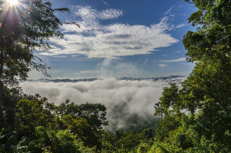Névoa bonita no sul de Tailândia imagem de stock