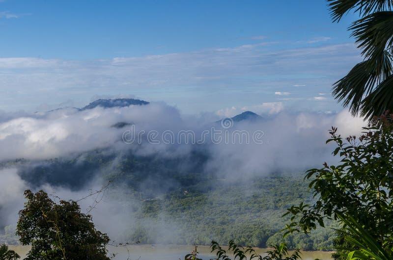 Névoa bonita sobre a floresta no sul de Tailândia imagem de stock royalty free