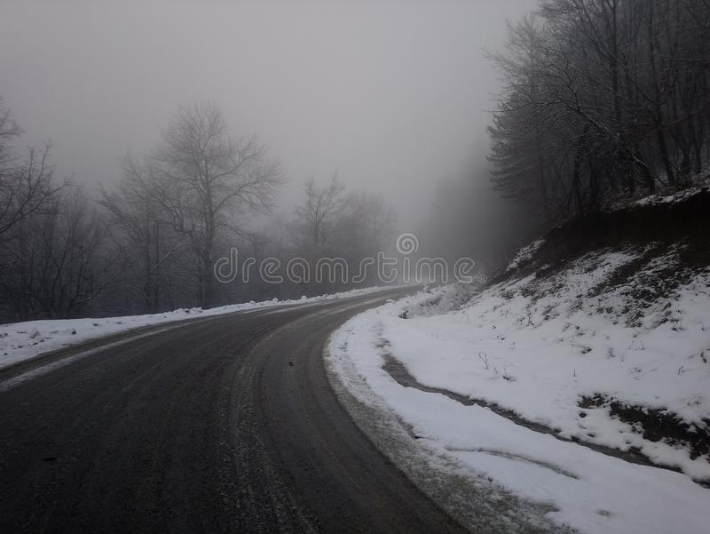 Névoa da névoa do direito da estrada de Treeline imagens de stock