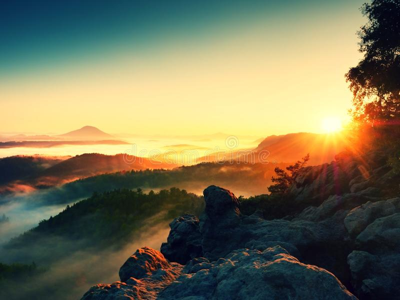 Névoa da manhã da queda o penhasco do arenito acima das copas de árvore da floresta fotografia de stock royalty free