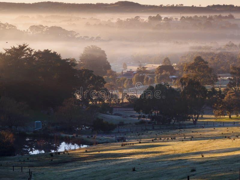 Névoa da manhã do inverno no monte de Germantown, Sul da Austrália imagem de stock